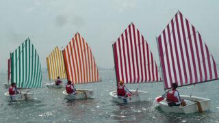 Daniel Burenin suunnittelemilla raidallisilla purjeilla varustetun optimistijollat purjehtivat merellä.